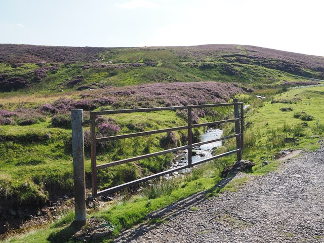 A Gate on the track to Johnscleugh