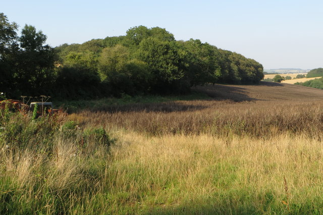 Woodland round Castle Dykes