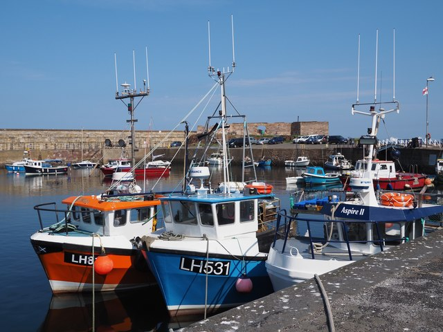 Colourful Fishing Boats in Victoria Harbour Dunbar