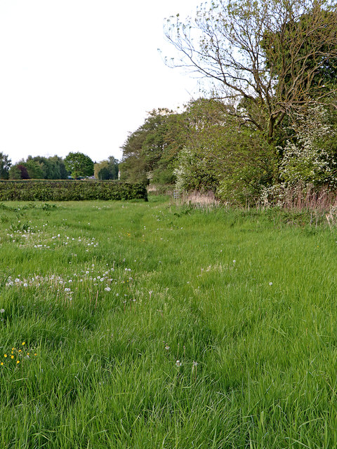 Pasture south-west of Huddlesford in Staffordshire