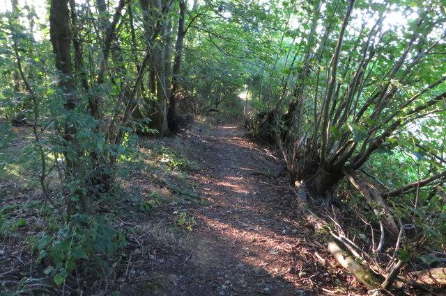 Footpath through Everdon Stubbs