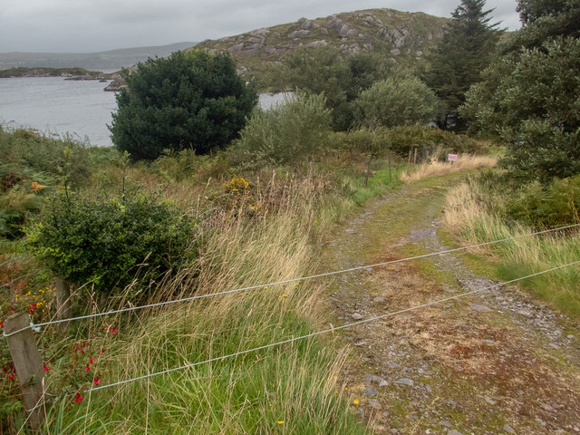 Inlet on Lough Currane