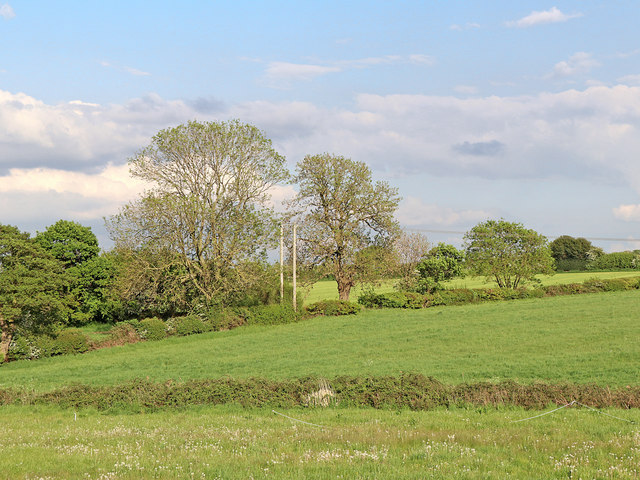 Pasture and woodland near Huddlesford in Staffordshire