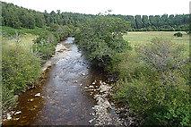 NH8722 : River Dulnain by Anne Burgess