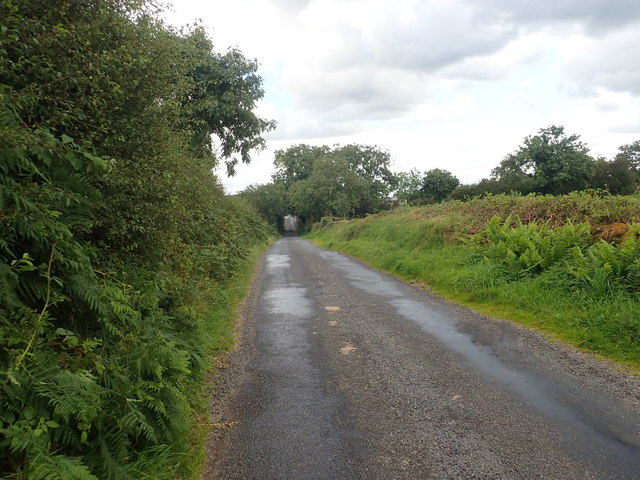 Donaldsons Road heading SE towards the junction with Ballyfannanhan Road