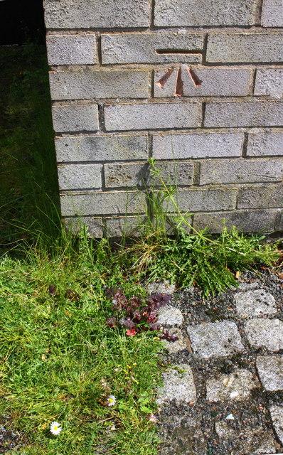 Benchmark on garage block on east side of Harris Road
