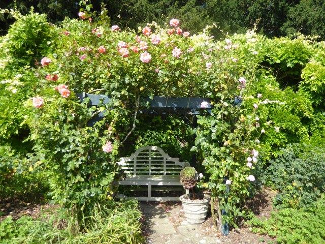 In the Walled Garden at Belmont Gardens