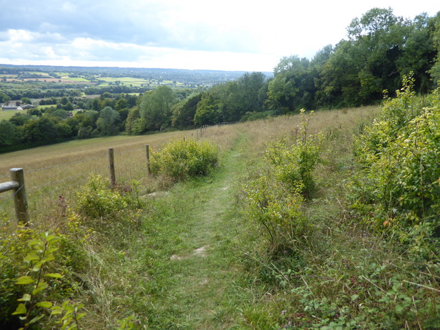 The scarp slope of the North Downs