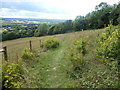 TQ5659 : The scarp slope of the North Downs by Marathon