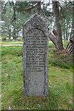 NH8520 : Iain Beag MacAndra Monument by Anne Burgess