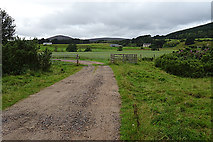 NH8621 : Track to Inverlaidnan by Anne Burgess