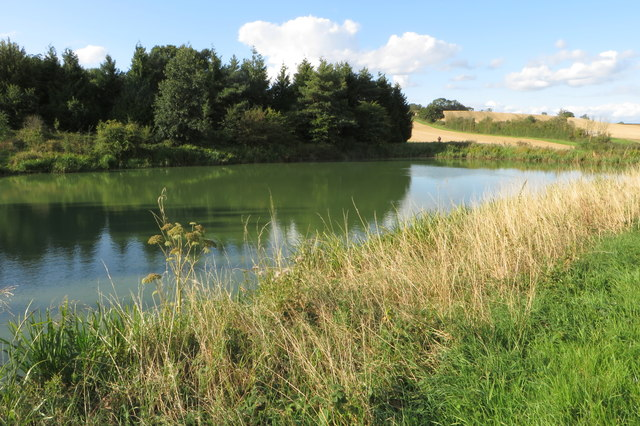 Pond between the fields
