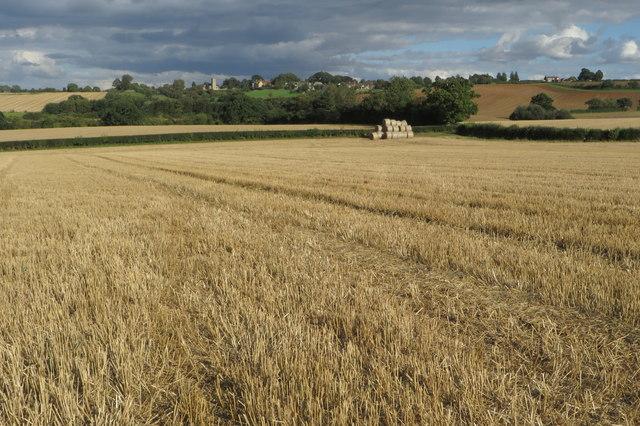 Hay reels in the corner of the field