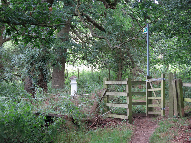 Kissing gate on footpath north of Cooks Wood