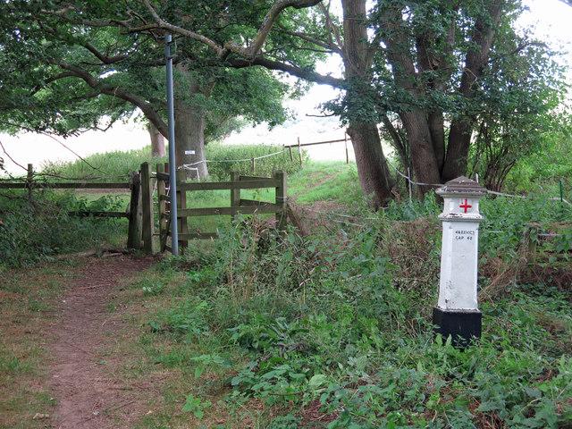 Footpath north of Cooks Wood