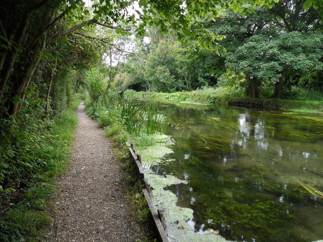 River Itchen near Brambridge