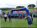 SE3532 : Memory Walk - start line by Stephen Craven