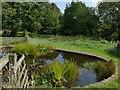 SE3632 : Temple Newsam farm - wildlife pond by Stephen Craven