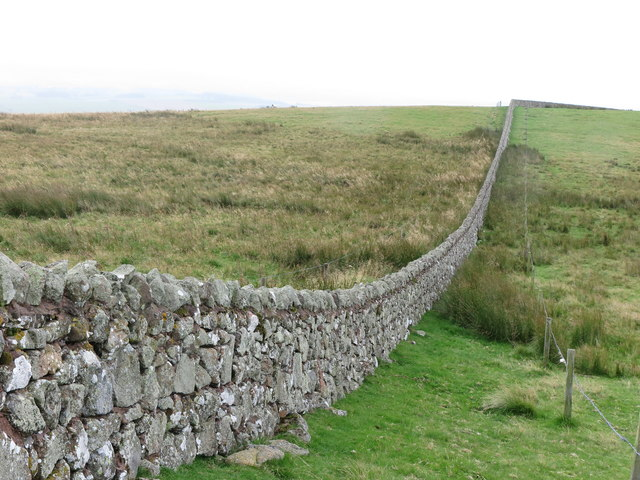 Wall on Lumsden Hill