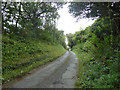 SZ5479 : Lane up to Stenbury Down from Wroxall by Robin Webster