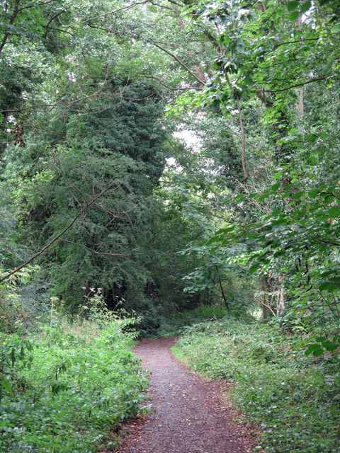 Path by the Grand Union Canal northeast of Springwell Lock