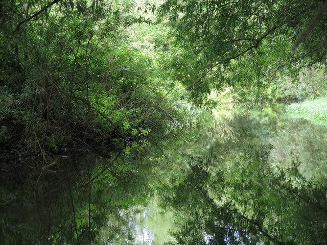 The River Colne (2)