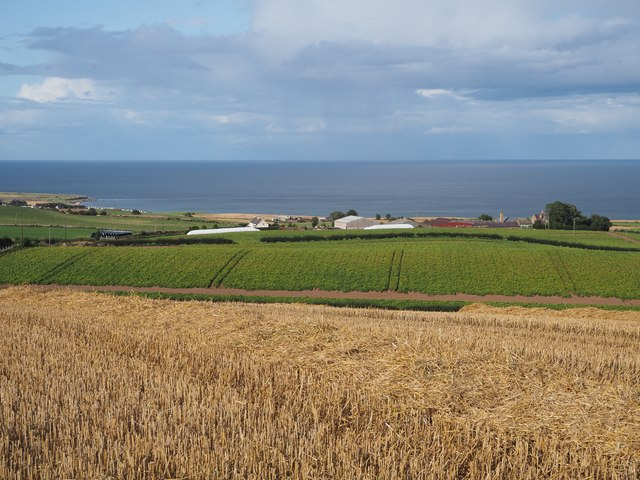 Looking towards Lawfield Farm