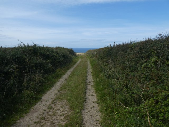 Track to Vicarage Cliff from Crosstown