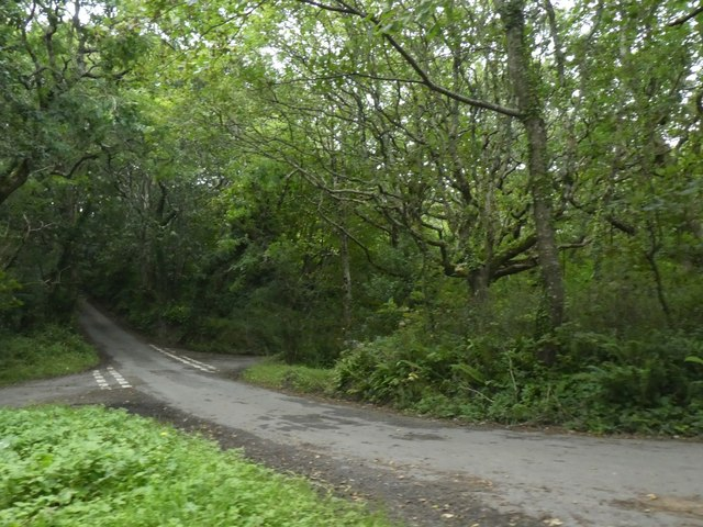 Crossroads in the woods at Crosswater