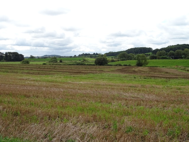 Stubble field off Creswell Grove (A5013)