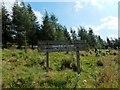 NS5061 : Hawkhead Woodland by Lairich Rig