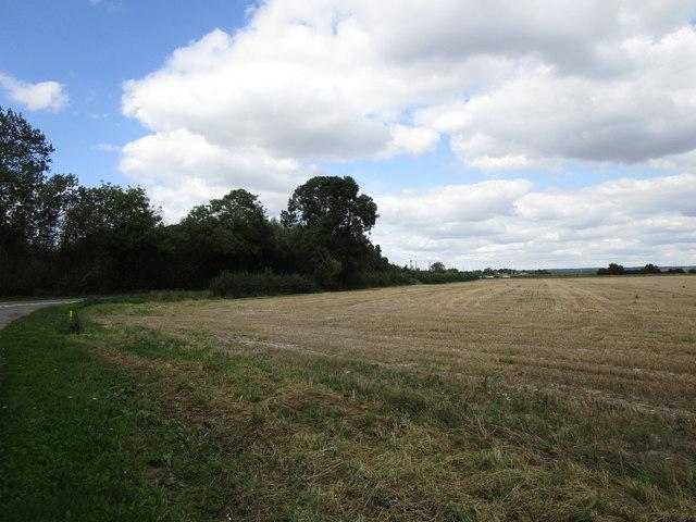 Stubble field opposite Medlam House