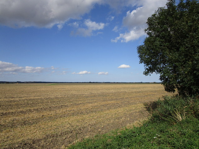 Stubble field off Bell Water Drain Bank North