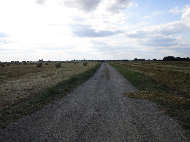 Farm track opposite Black's Farm