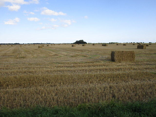 Stubble field off Spilsby Road, Eastville
