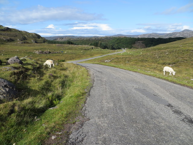 Road (C1091) heading towards Ardheslaig