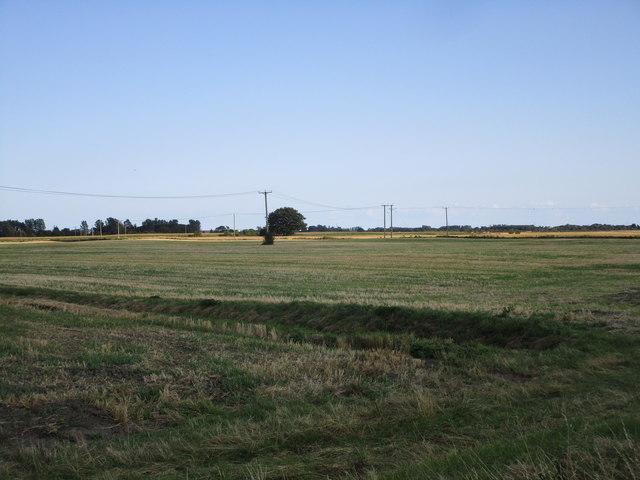 Stubble fields near The Laurels