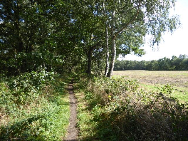 Path into Haxey Turbary
