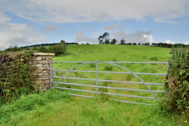 Gate, Lislap East