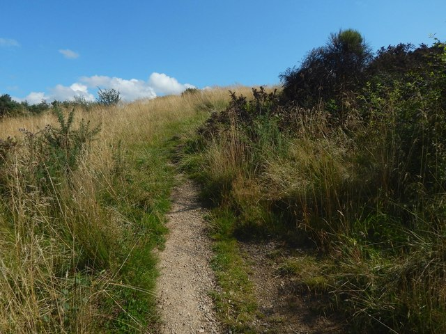 Path leading up Hurlet Hill