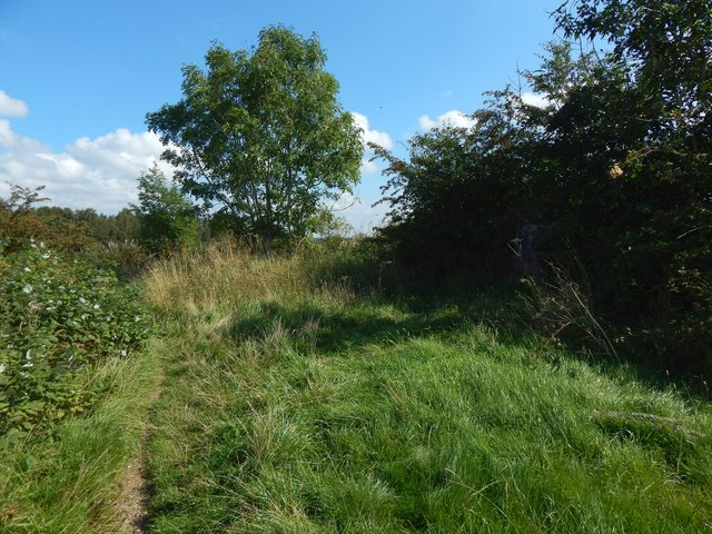 Path on Hurlet Hill