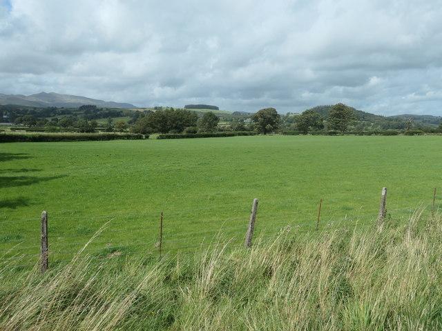 Farmland on the south bank of Afon Twrch