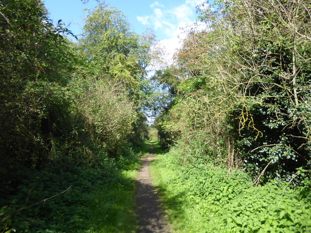 The line of the former Axholme Joint Railway