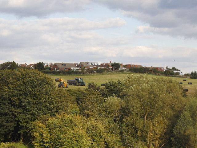 Grass cutting below West Ardsley