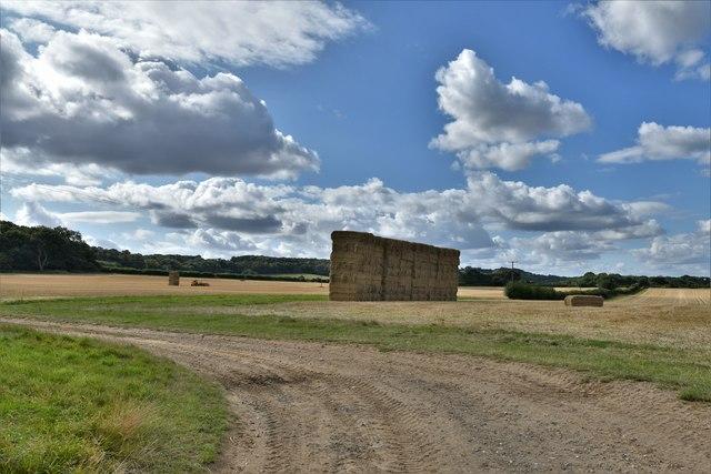 Highclere: Harvested agricultural land