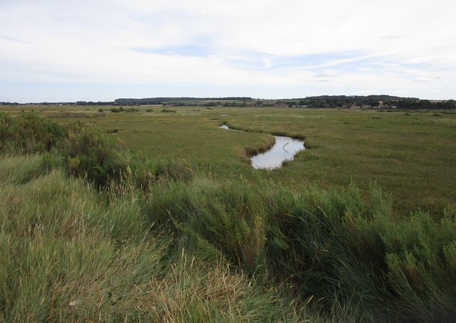 Salt marsh behind the dunes, Brancaster
