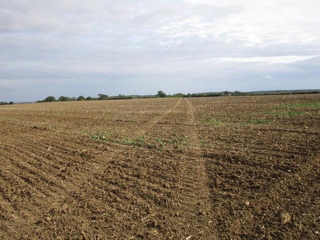 Bridleway to Pickworth