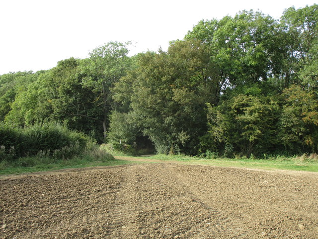 Approaching Pickworth Great Wood