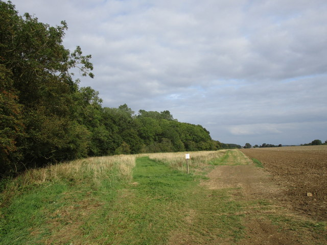 Permissive path alongside Pickworth Great Wood