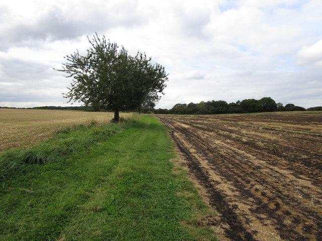 Bridleway to Greetham